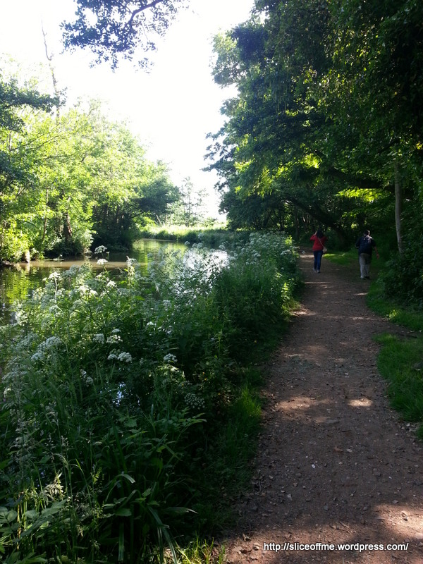 Walk along River Way